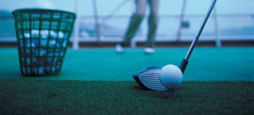 sky-activity-golfcage